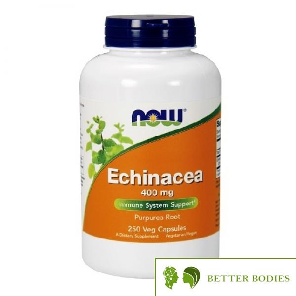 NOW Echinacea 400mg, 250 капсули